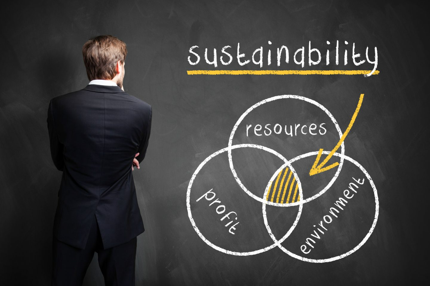 Making Business Sustainable: Starting Tips